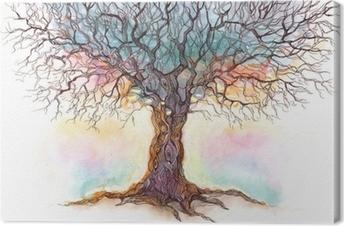 Canvas premium Oude boom (reeks C)