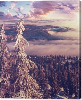 Canvas premium Winter in Noorwegen