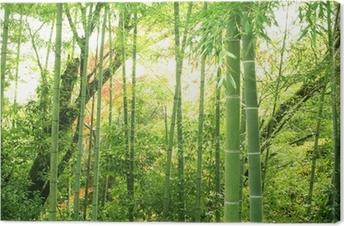 竹林 Canvas Print