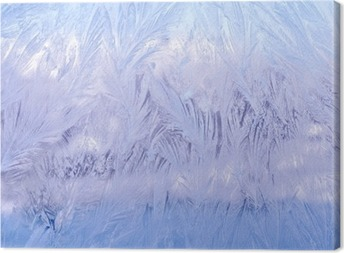 декоративный морозный узор на стекле Canvas Print