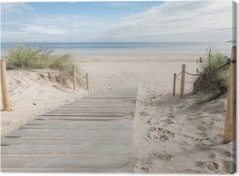 A path to the beach Canvas Print