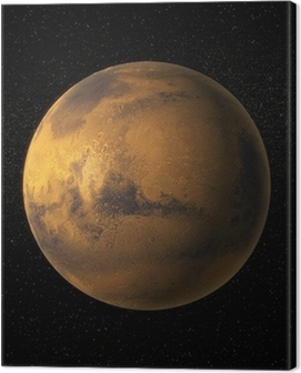 A view of planet Mars Canvas Print