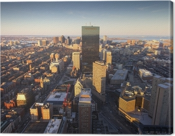 Aerial View of Boston Canvas Print