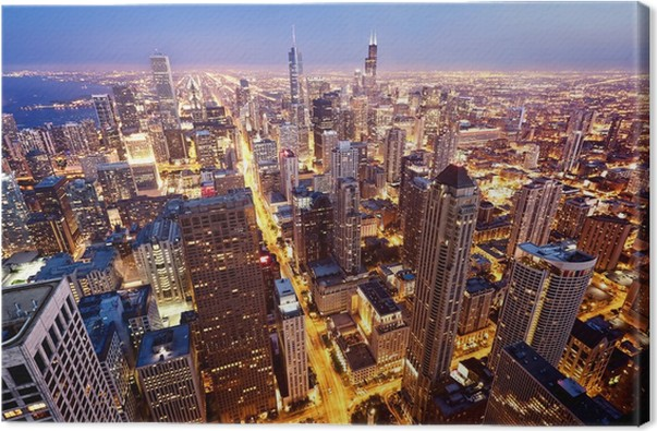 Aerial View Of Chicago Downtown Canvas Print Pixers
