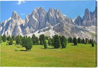 Alps on summer Canvas Print