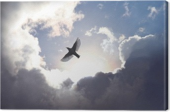 Angel Bird in Heaven Canvas Print