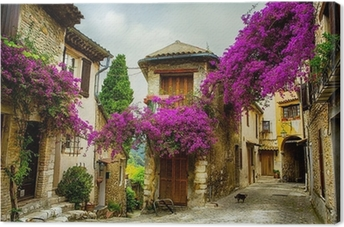 art beautiful old town of Provence Canvas Print