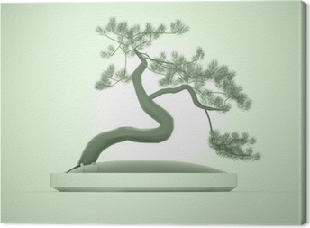 Asian bonsai tree on green Canvas Print