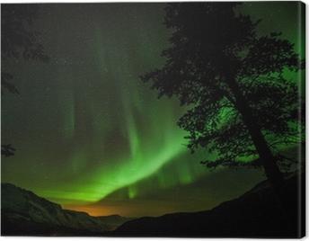 Aurora Borealis (Northern lights) in Sweden Canvas Print