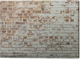 Background of old vintage dirty brick wall with peeling plaster Canvas Print