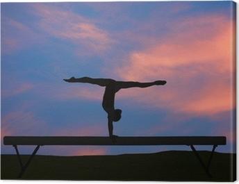 Balance beam Canvas Print