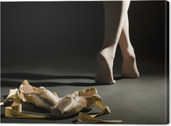 ballet schoes Canvas Print