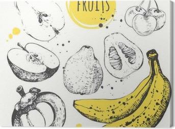 Banana, mangosteen, apple, bergamot. Hand drawn set with fresh food. Canvas Print