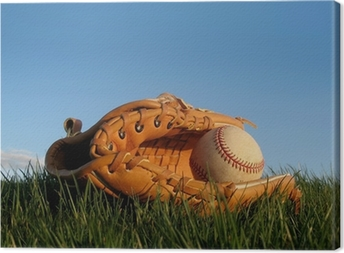 Baseball glove with ball resting in a grass field Canvas Print