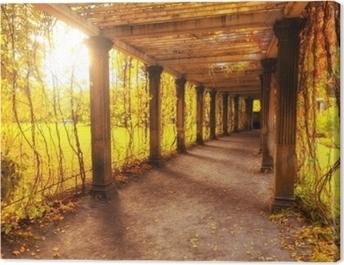 Beautiful autumn park Canvas Print