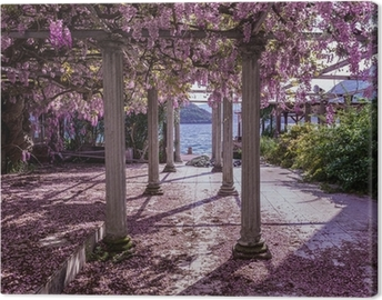 Beautiful front yard with pillars and wisteria flowers Canvas Print
