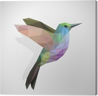 bird / colourful hummingbird Canvas Print
