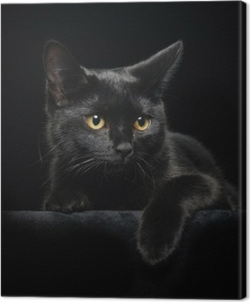 Black cat with yellow eyes Canvas Print