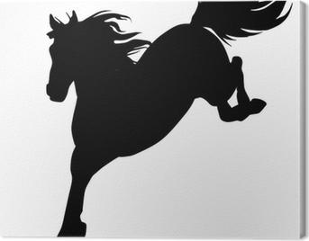 Black horse silhouette 14 (vector) Canvas Print
