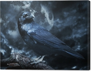 Black raven in moonlight perched on tree. Scary, creepy, gothic Canvas Print