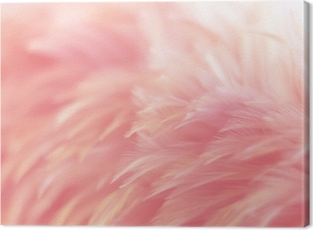 Blur Bird chickens feather texture for background, Fantasy, Abstract, soft color of art design. Canvas Print