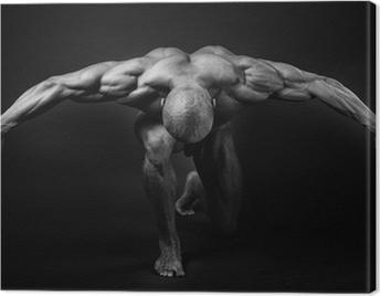 bodybuilding Canvas Print