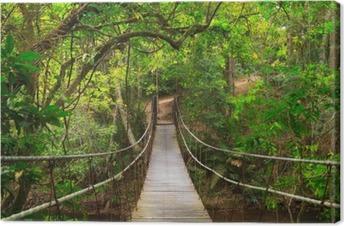Bridge to the jungle, Thailand Canvas Print