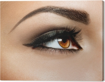 Brown Eye Makeup. Eyes Make-up Canvas Print