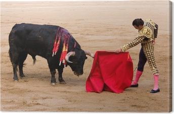 Bullfight in Barcelona Canvas Print