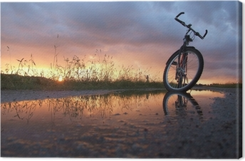 Bycicle in the puddle Canvas Print