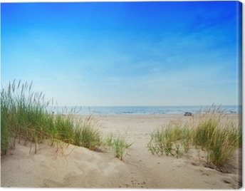 Calm beach with dunes and green grass. Tranquil ocean Canvas Print