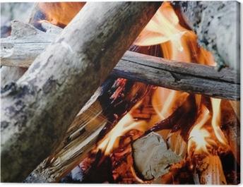 camp fire Canvas Print