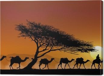 Caravane et arbre au couchant Canvas Print