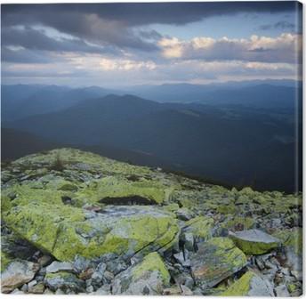Carpathian mountain landscape Canvas Print