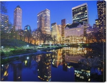 Central Park at Night in New York City Canvas Print