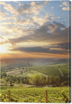 Chianti vineyard landscape in Tuscany, Italy Canvas Print