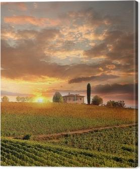 Chianti vineyard landscape in Tuscany, Italy Canvas Print