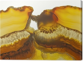 Close up of a Slice Agate Gemstone Canvas Print
