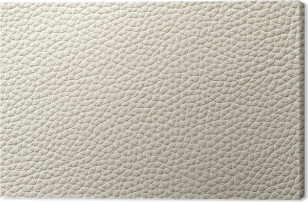 Closeup Of Seamless White Leather Texture Canvas Print