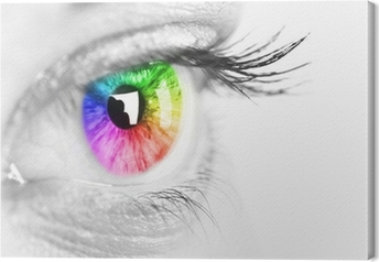 Colorful eye Space for text. Canvas Print