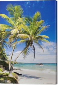Cumana Bay, Trinidad Canvas Print