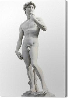 David by Michelangelo Canvas Print
