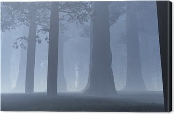 Deep Forest Fairy Tale Scary Scene 3D render Canvas Print