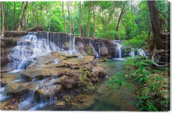 Deep forest Waterfall in Thailand Canvas Print