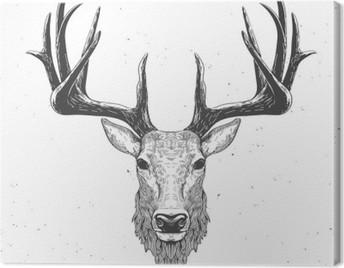 deer head on white Canvas Print