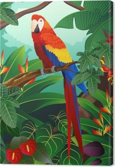 Detailed macaw bird vector Canvas Print