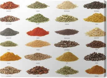 Different spices isolated on white background. Large Image Canvas Print