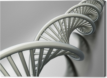 DNA Strang Canvas Print