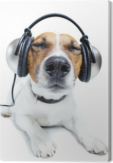 Dog listening music Canvas Print