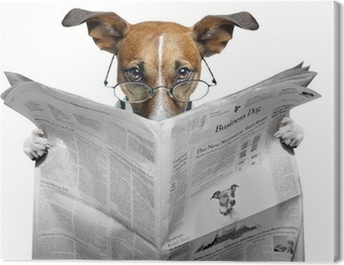 dog reading a newspaper Canvas Print